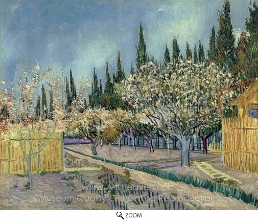Vincent Van Gogh, Orchard Surrounded by Cypresses oil painting reproduction
