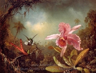 Orchid with Two Hummingbirds painting reproduction, Martin Johnson Heade