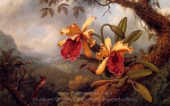 Orchids and Hummingbird painting reproduction, Martin Johnson Heade