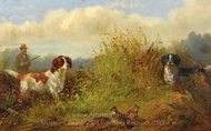 Quail Shooting The Point painting reproduction, Arthur Fitzwilliam Tait