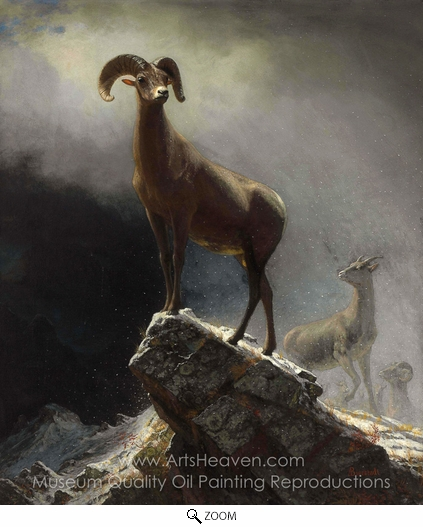 Albert Bierstadt, Rocky Mountain Sheep oil painting reproduction
