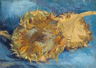 Still Life with Two Sunflowers painting reproduction, Vincent Van Gogh