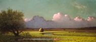 Sunlight and Shadow: The Newbury Marshes painting reproduction, Martin Johnson Heade