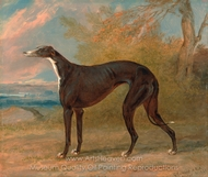The Black and White Greyhound Bitch, Juno painting reproduction, George Garrard