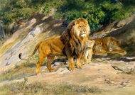 The King Watches painting reproduction, Rosa Bonheur