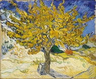 The Mulberry Tree painting reproduction, Vincent Van Gogh