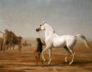 The Wellesley Grey Arabian Led through the Desert painting reproduction, Jacques Laurent Agasse