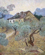 The White Cottage among the Olive Trees painting reproduction, Vincent Van Gogh