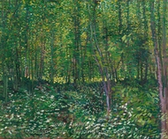 Trees and Undergrowth painting reproduction, Vincent Van Gogh