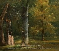 Trees in the Bois de Boulogne, Paris painting reproduction, Achille-Etna Michallon
