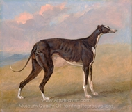 Turk, a Greyhound, the Property of George Lane Fox painting reproduction, George Garrard