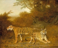 Two Bengal Tigers in a Savannah Landscape, with a Man in a Tree painting reproduction, Jacques Laurent Agasse