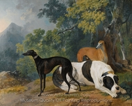 Two Greyhounds and a Mastif Belonging to the Duke of Hamilton painting reproduction, Sawrey Gilpin