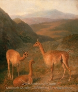 Vicunas painting reproduction, Jacques Laurent Agasse