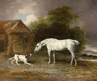 White Horse and a Terrier painting reproduction, Benjamin Marshall