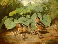 Woodcock and Young painting reproduction, Arthur Fitzwilliam Tait