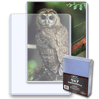 5x7 inch card or photo topload plastic display holders (pack of 25)