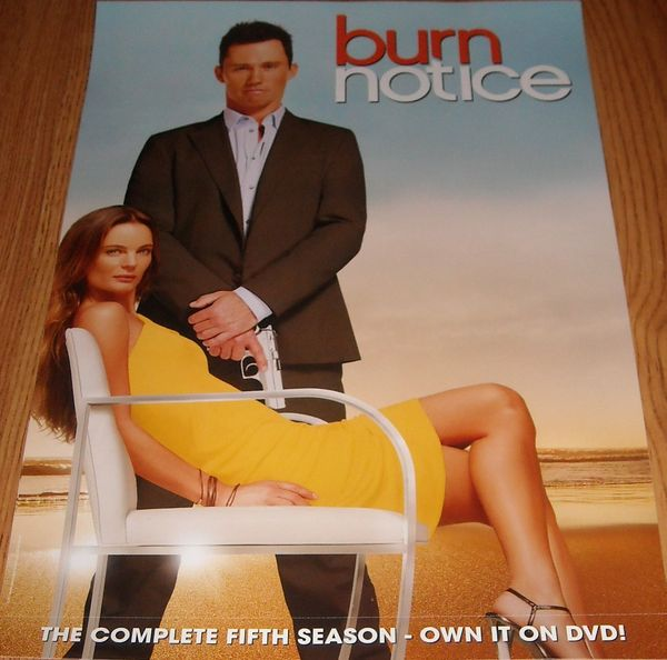 Burn Notice 2012 Comic-Con mini 13x20 DVD promo poster (Jeffrey Donovan)