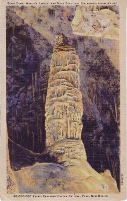 Carlsbad Caverns vintage color postcard (1940s)