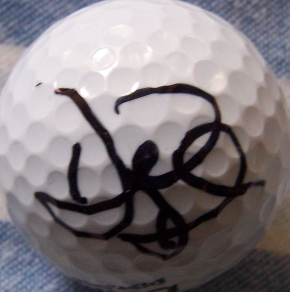 David Duval autographed golf ball