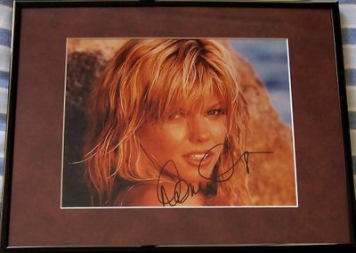 Donna D'Errico (Baywatch) autographed 8x10 photo matted and framed