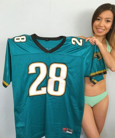 Fred Taylor Jacksonville Jaguars authentic Nike triple stitched teal jersey NEW