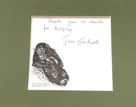 Jane Goodall autograph framed with vintage 8x10 photo inscribed Thank you so much for helping