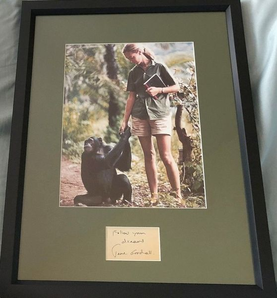 Jane Goodall autograph matted and framed with vintage 8x10 photo inscribed Follow your dreams