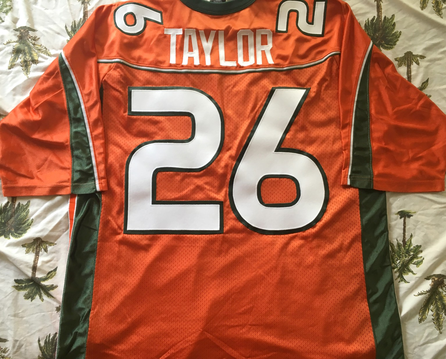sean taylor stitched jersey