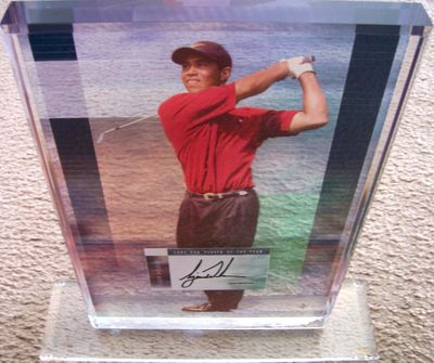 Tiger Woods autographed UDA 2002 PGA Tour Player of the Year 8x10 photo acrylic plaque