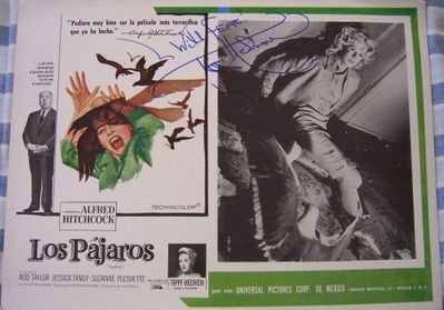 Tippi Hedren autographed The Birds movie original 12x16 lobby card (Spanish)