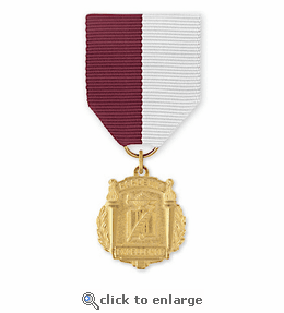 No. 15 Service Related 2 Title Medal
