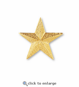 No. 22 Star Goldtone Pin