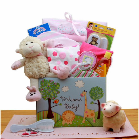 Welcome New Baby Pink Gift Box