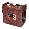 J250P Group-901 Trojan 6 Volt Deep-Cycle Flooded Batteries