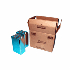 Hazmat UN 4G Shipping Boxes with F-style Gallon Cans