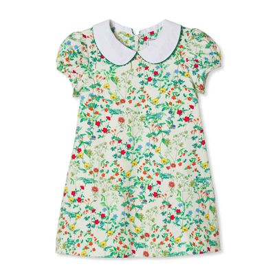 Classic Prep Girls Green Fall Floral Paige Dress with Collar