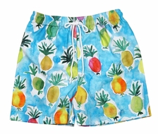 Le Za Me Baby / Toddler Boys Blue Colorful Pineapples Print Swim Trunks