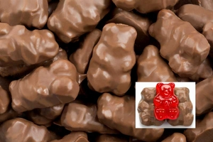 Chocolate Covered Gummi Bears 2.25lb Box