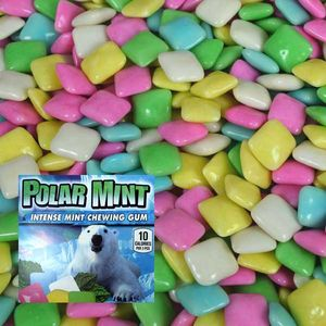Dubble Bubble Polar Mint Chiclet Gum 24.75lb Bulk