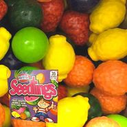 Dubble Bubble Seedlings Gumballs 850 Count Bulk