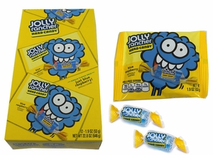 Jolly Rancher Blue Raspberry Pieces 12 Count