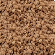 Praline Pecan Pieces Medium 5lb Bulk