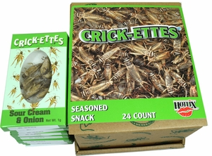 Real Cricket Snacks 24 Count Sour Cream Onion