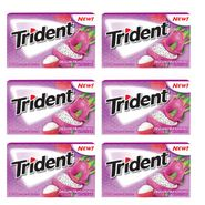Trident Dragon Fruit Lychee 12 Count