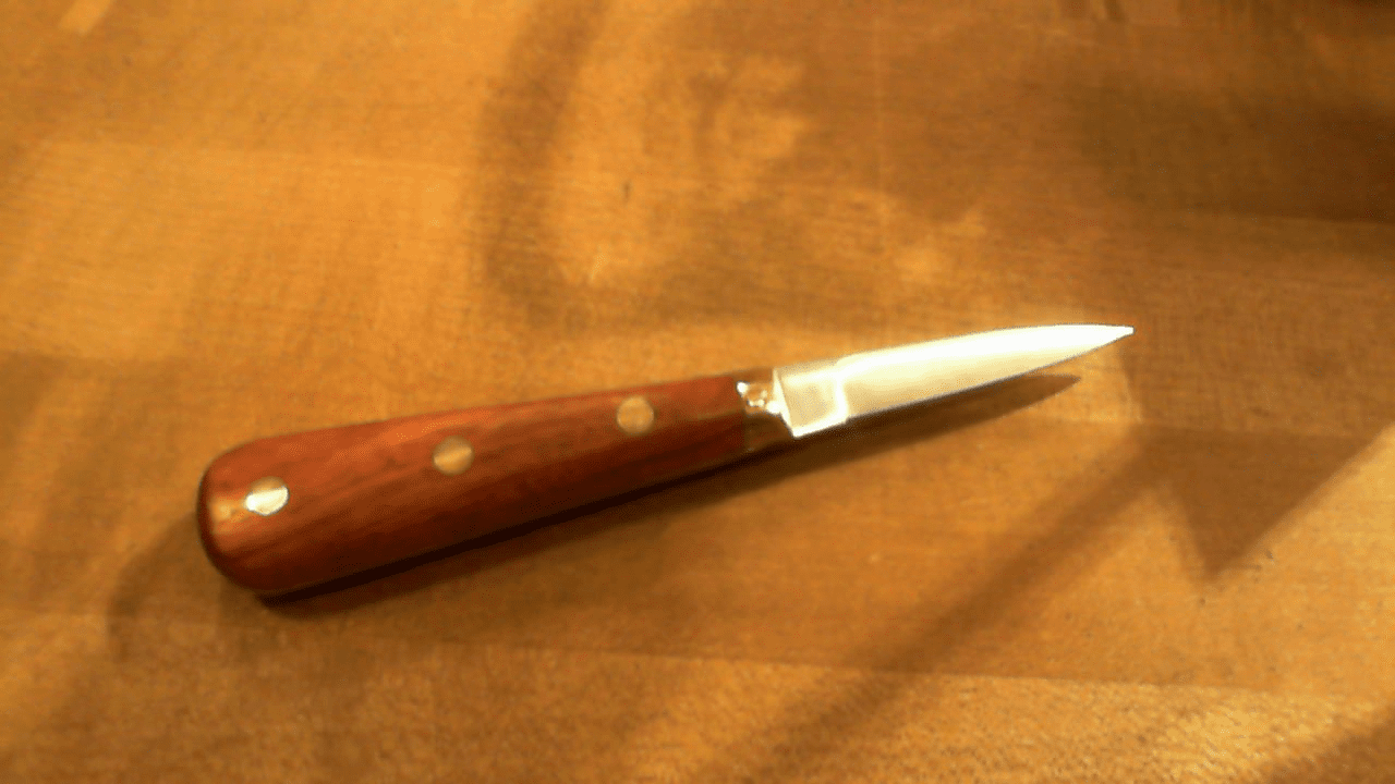 Lancette Rosewood Brass Rivets and Collar France