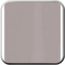 Medium Beige/Tan Metallic Molding & Trim