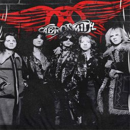 Aerosmith Brick Paint Sublimation Shirts