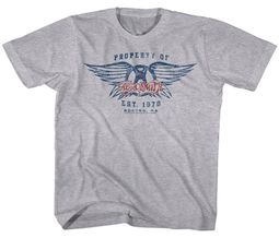 Aerosmith Kids Shirt Property Of And Est.1970, Boston, MA Grey T-Shirt