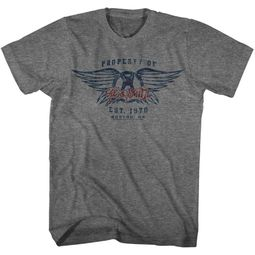 Aerosmith Shirt Property Of And Est. 1970, Boston, MA Grey T-Shirt